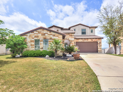 San Antonio Single Family Home New: 16123 Salto Del Agua