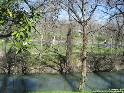 Guadalupe County Single Family Home For Sale: 115 McQueeney Rd