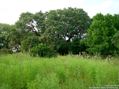 Comal County Residential Lots & Land For Sale: 10194 Hwy 281 N