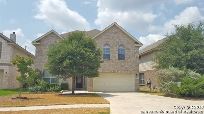 San Antonio TX Single Family Home Back on Market: $295,000