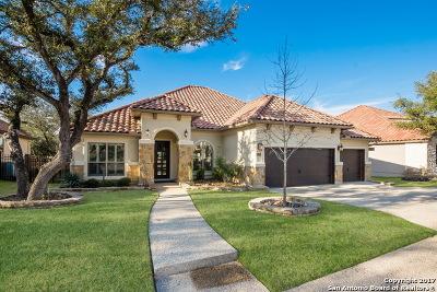 San Antonio Single Family Home New: 25318 Estancia Cir