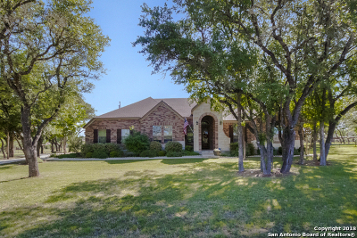 New Braunfels Single Family Home New: 224 Lowman