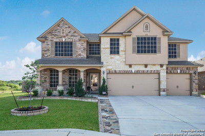 Single Family Home New: 22005 Gypsy View
