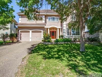 San Antonio Single Family Home New: 19139 Kristen Way