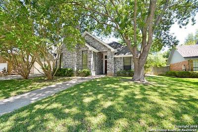 New Braunfels Single Family Home New: 825 Northstar Loop