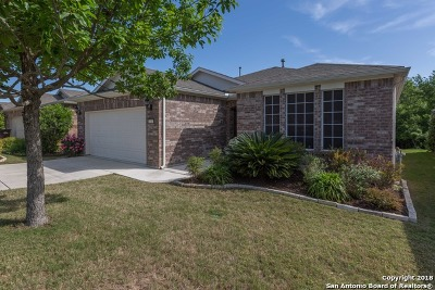 Bexar County Single Family Home New: 12323 Modena Bay