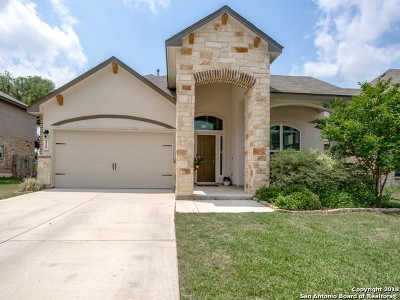 Bexar County Single Family Home New: 339 Whistling Duck
