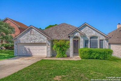 Cibolo Single Family Home New: 113 Cinnabar Trail