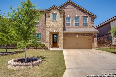 San Antonio Single Family Home New: 8615 Kihnu Willow