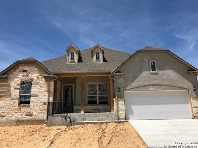San Antonio Single Family Home New: 28929 Throssel Lane