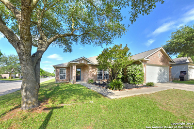 Helotes Single Family Home New: 12903 Strong Cedar