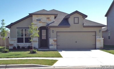 Converse Single Family Home New: 10432 Dakota River