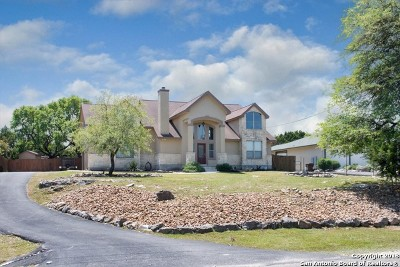 Spring Branch Single Family Home New: 1180 Dragon Fly