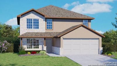 San Antonio Single Family Home New: 5522 Goliad Sand
