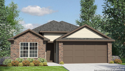 New Braunfels Single Family Home New: 2545 McCrae
