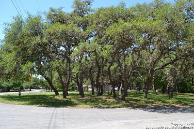 San Antonio Residential Lots & Land New: 16723 Parkstone Blvd
