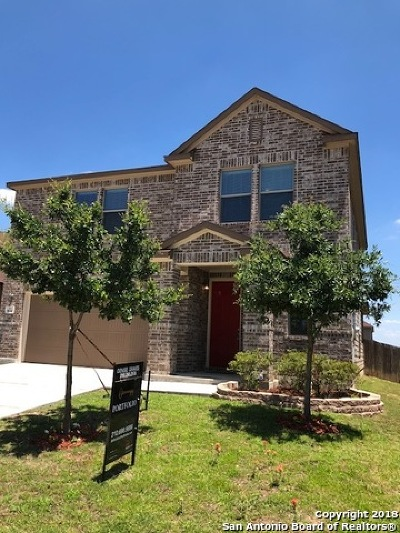 San Antonio TX Single Family Home New: $249,500