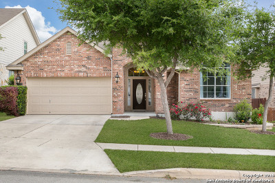 Bexar County Single Family Home New: 12231 Dewitt Cove