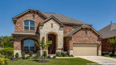 Boerne Single Family Home New: 8418 Mystic Chase