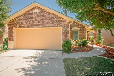 San Antonio Single Family Home New: 1234 Plaza Lake Dr