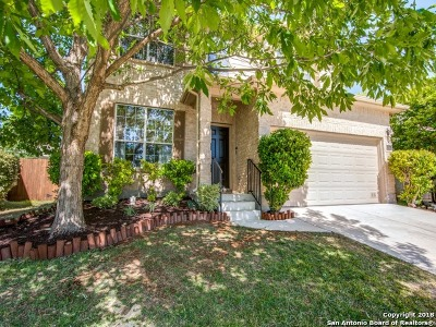 Bexar County Single Family Home New: 6323 Big Bend Cove