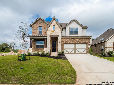 New Braunfels Single Family Home New: 905 Carriage Loop