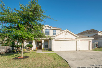 San Antonio Single Family Home New: 24702 Alamosa Falls