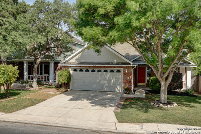 San Antonio Single Family Home New: 4535 Taylors Bend