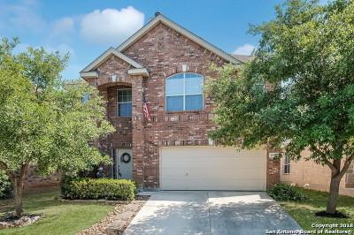 San Antonio TX Single Family Home New: $204,900