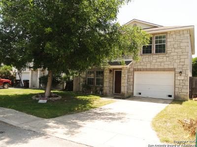 San Antonio TX Single Family Home New: $174,000