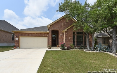Bexar County Single Family Home New: 5007 Segovia Way