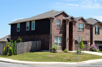 San Antonio TX Single Family Home New: $254,900