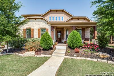 San Antonio Single Family Home New: 28258 Willis Ranch