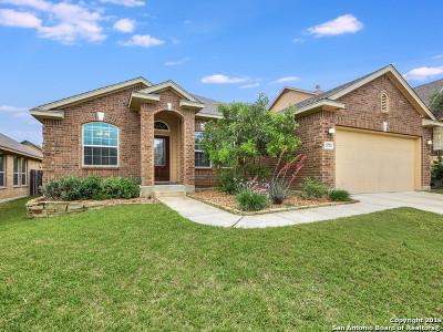 San Antonio Single Family Home New: 23702 Misty Peak