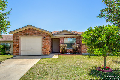 San Antonio TX Single Family Home New: $140,000