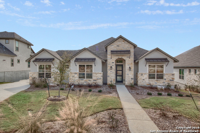 San Antonio TX Single Family Home New: $562,315