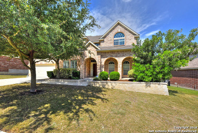 San Antonio TX Single Family Home New: $368,500