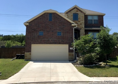 San Antonio TX Single Family Home New: $340,000