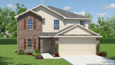 San Antonio TX Single Family Home New: $253,800