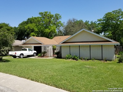 San Antonio TX Single Family Home New: $243,000