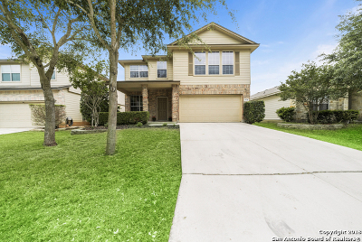 San Antonio Single Family Home New: 5938 Smoky Quartz
