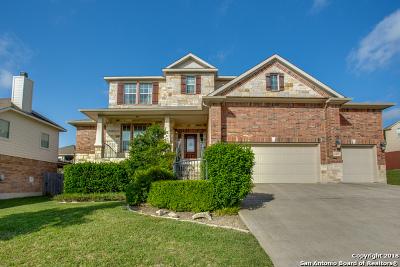 San Antonio Single Family Home New: 2431 Cortona Mist