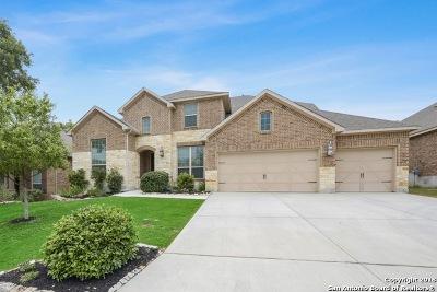 San Antonio Single Family Home New: 25811 Enchanted Dawn