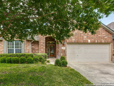 Helotes Single Family Home New: 13066 Wild Heart