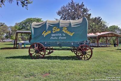 Farm & Ranch For Sale: 810 Fm 470