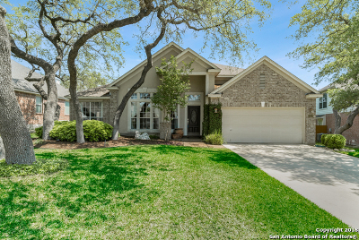 Bexar County Single Family Home New: 26108 Lookout Falls