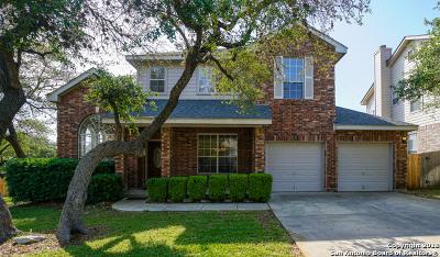 San Antonio Single Family Home New: 9202 Vinca Pass