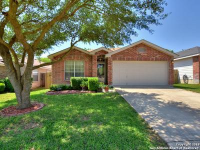 San Antonio TX Single Family Home New: $185,000