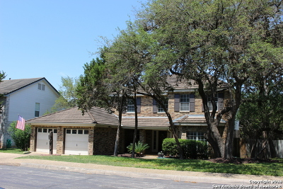 San Antonio Single Family Home New: 507 Chardonnet