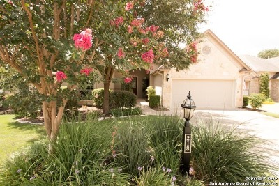 San Antonio Single Family Home New: 218 Roseheart